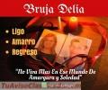 bruja-vidente-delia-3114504503-trabajos-efectivos-someto-amarro-doblego-y-domino-1.jpg