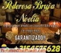 LA ÚNICA Y EXPERTA BRUJA NOELIA RAMIREZ 3154575627